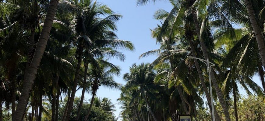Хайнань - советы и особенности отдыха